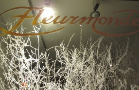 Fleurmonde Holiday Window Display 2012