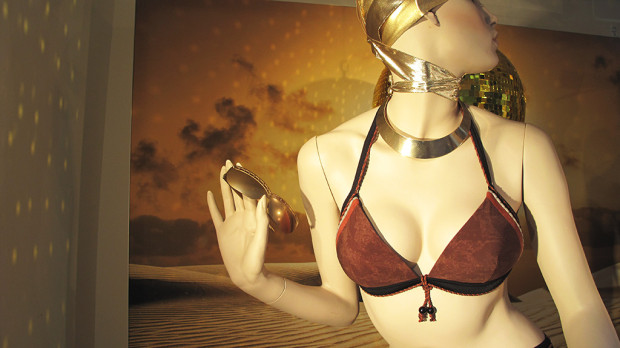 best-window-displays_marlies-dekkers_2013_sunset-africa_04
