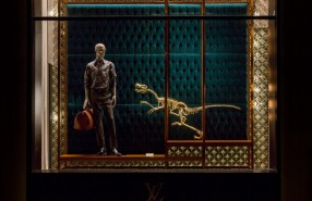 Natural History Window Display at Louis Vuitton