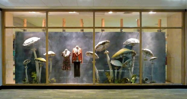 best-window-displays_anthropologie_2013_fall_mushroom_04