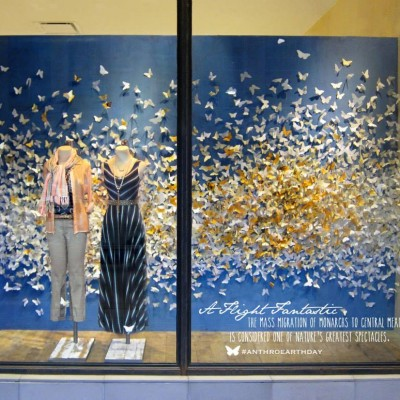 Anthropologie 'Monarch Earth Day' Window Display