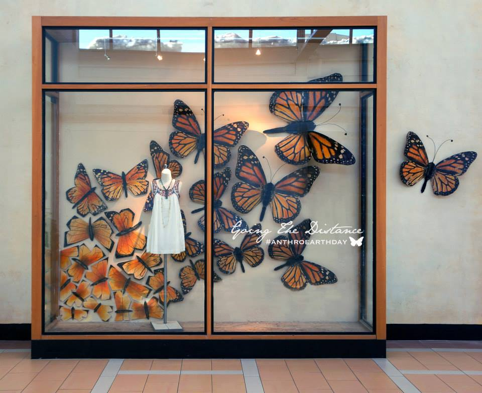 best-window-displays_anthropologie_2014_spring_earth-day_monarch-butterfly_07